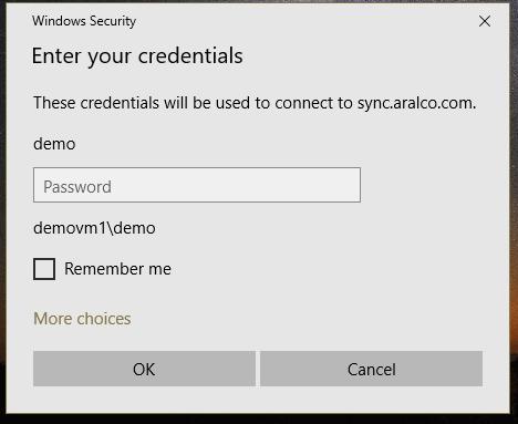Remote Demo Access